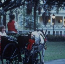 Image of 0123-045_09-02-356 - Carriage Ride in Forsyth Park