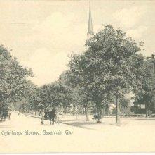 Image of 1121-057_0222 - Oglethorpe Avenue, Savannah, Ga.