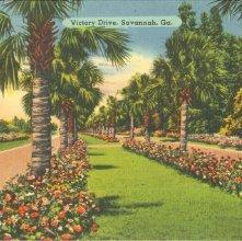 Image of 1121-057_0329 - Victory Drive, Savannah, Ga.