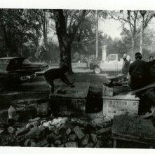 Image of 1121-100_0834 - Laurel Grove South Cemetery Restoration Work