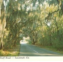 Image of 1121-057_1235 - White Bluff Road --- Savannah, Ga.