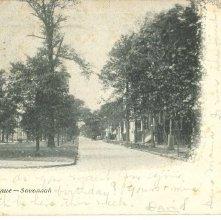 Image of 1121-057_1333 - Oglethorpe Avenue -- Savannah