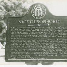 Image of 1121-100_1077 - Nicholsonboro