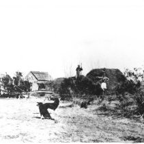 Image of Pulsipher Homestead at the lower ranch - Picture of the Pulsipher Homestead at the lower ranch - circa 1915, Joseph Smith Leavitt Family about 1905, the homestead is now the sit where the Oasis Casino once stood.  Current location of original is unknown