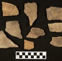 Image of 81/6831 - Sherd