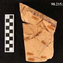 Image of 90.215.9 - Sherd