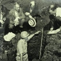 Image of Boylston Fishweir excavations