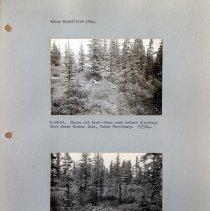 Image of 2017.0.126 - Print, Photographic