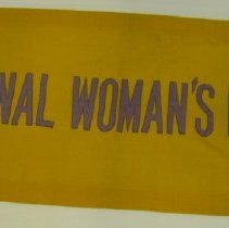 Image of National Woman's Party Textile Collection - 1916.004