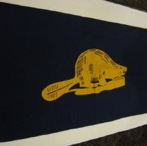 Image of Flag reverse
