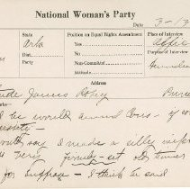 Image of National Woman's Party Congressional Voting Card Collection - 1924.011.001