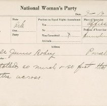 Image of National Woman's Party Congressional Voting Card Collection - 1924.014.001
