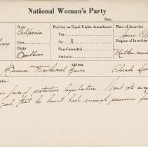 Image of National Woman's Party Congressional Voting Card Collection - 1924.020.003