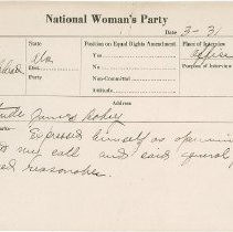 Image of National Woman's Party Congressional Voting Card Collection - 1925.004.001