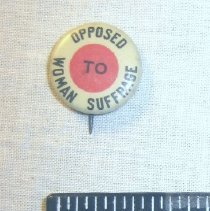 Image of National Woman's Party Button Collection - 2007.001