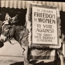 Image of National Woman's Party Photograph Collection - 1916.001.027