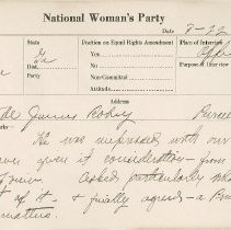 Image of National Woman's Party Congressional Voting Card Collection - 1924.033.001