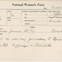 Image of National Woman's Party Congressional Voting Card Collection - 1924.034.001
