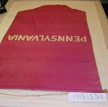 Image of National Woman's Party Textile Collection - 1913.155 b