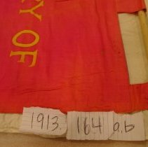 Image of National Woman's Party Textile Collection - 1913.164b