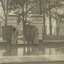 Image of National Woman's Party Photograph Collection - 1917.001.039