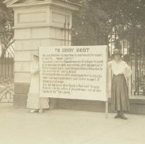 Image of National Woman's Party Photograph Collection - 1917.001.119