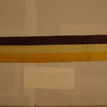 Image of National Woman's Party Textile Collection - 1913.300.008