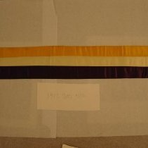 Image of National Woman's Party Textile Collection - 1913.300.010