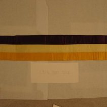 Image of National Woman's Party Textile Collection - 1913.300.012