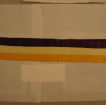 Image of National Woman's Party Textile Collection - 1913.300.023