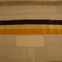 Image of National Woman's Party Textile Collection - 1913.300.025