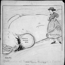 Image of Nina Allender Political Cartoon Collection - 1916.003.018