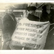 Image of Photographic Records of the National Woman's Party-Action Photos - 1919.001.046.02