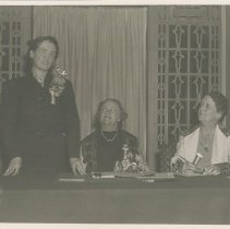 Image of Photographic Records of the National Woman's Party-Action Photos - 1938.001.005