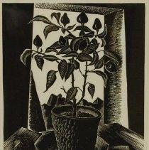 Image of H. Mallette Dean, Pepper Plant, ca1935-42, Lino, 8x11in