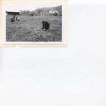 Image of Michael Wheatley, from Missoula Ranch Locators, 1977, Photo, 3x5in