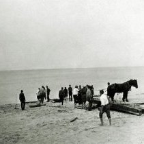 Image of Dunes, Indiana - View of Horses on Beach - pc-6-6-15-b1-m