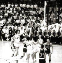 Image of CHS - Basketball                                                                                                                                                                                                                                           - CHS-basketball-100