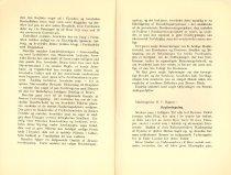 Image of Side 12 og 13 . Page 12 and 13