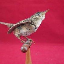 Image of Birds - 72.0670.315