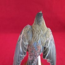 Image of Birds - 85.0249.659