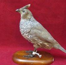 Image of Birds - 72.0349.216