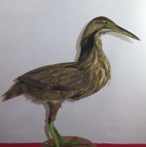 Image of Birds - 72.1090.142