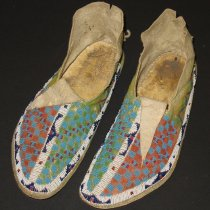 Image of 01800.001-.002 - Moccasin