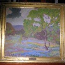 Image of 2001.03 - Texas Bluebonnets