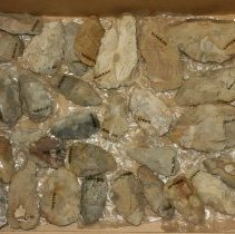 Image of 68.8.163-168 - Lithic Tool