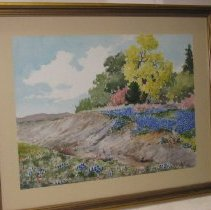 Image of 75.003 - Colors of Spring