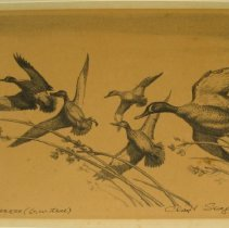 """Image of 79.233 - Lithograph: """"Early Express - Blue Wing T"""