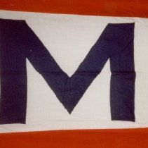 Image of 80.166 - House Flag For J. Ludwig Monwickels Rede