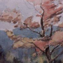 Image of 90.031.177 - Tree Study